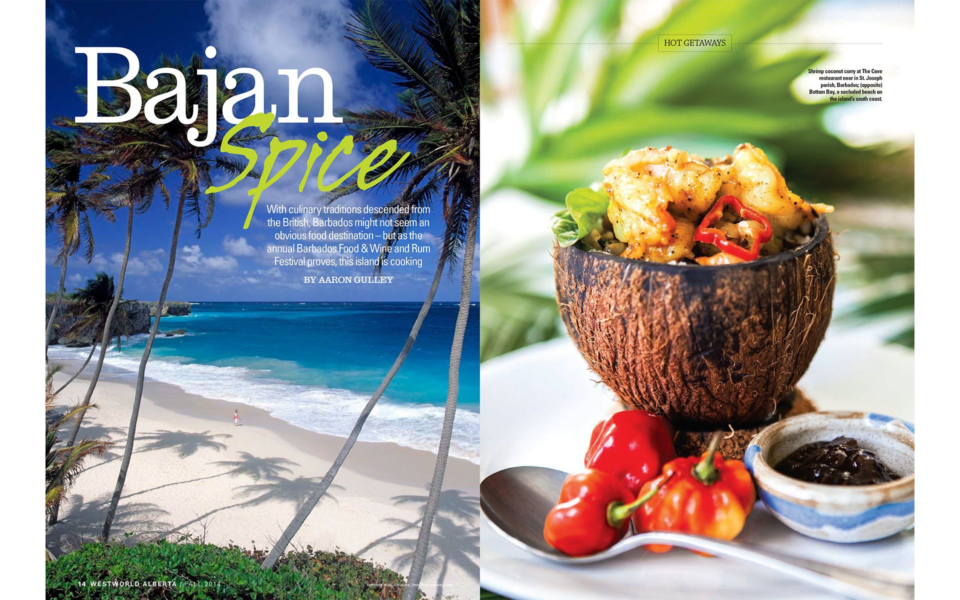 "<p style=""text-align: center;""><b><font color=""2a2871"">Bajan Spice, Westworld, Fall 2014</font></b>